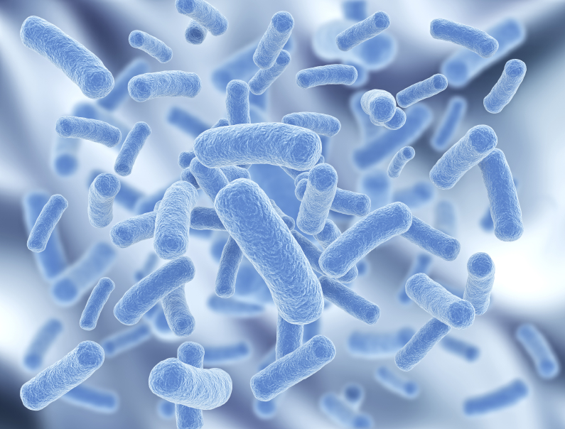 Probiotics: know your strain! video by Dr Jason Hawrelak