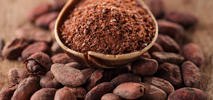 Presence practitioner spiels on cacao- which is not a superfood